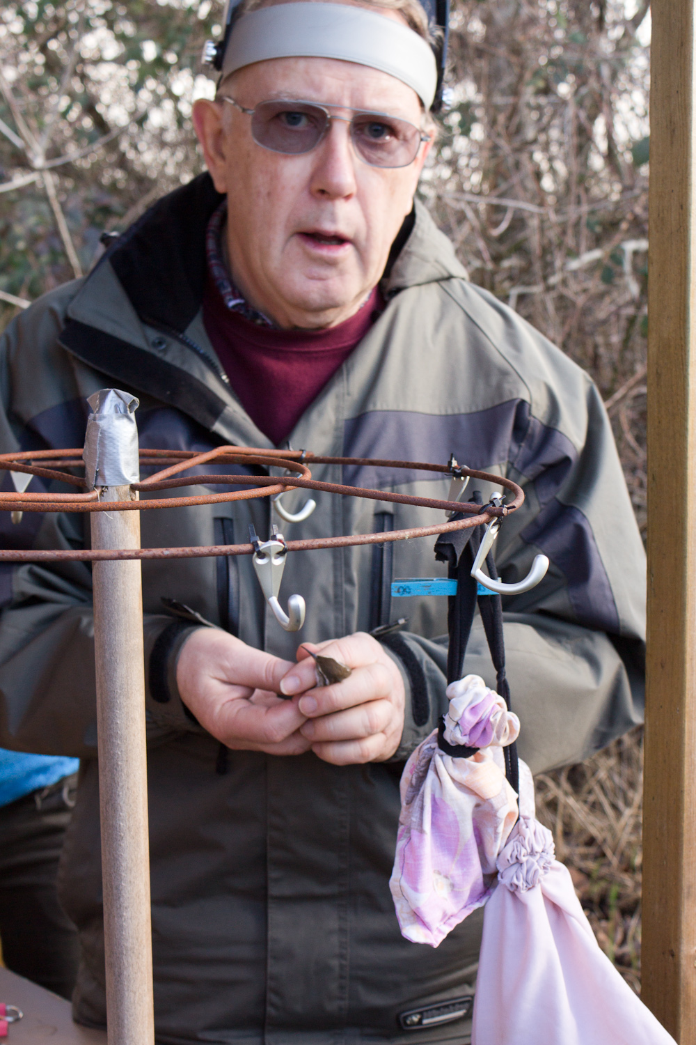 Winter birding is not as productive as spring and fall, but it is a low pressure way to train banding volunteers