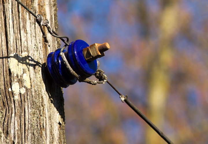 This beautiful insulator with a rusty bolt mirrored the bright blue sky with the budding trees of the background.