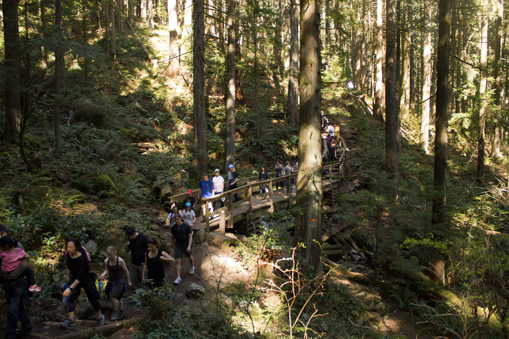 This is how trails near Vancouver look on nice days.