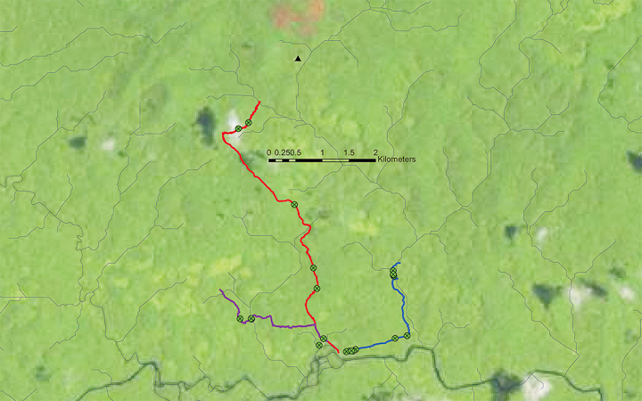 trails etc